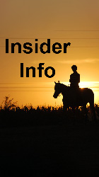 Insider Info - Horse Racing Service
